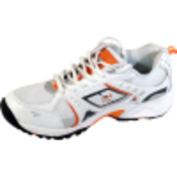 Professional Cricket Shoes