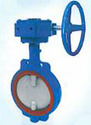 Dragonfly Butterfly Valves