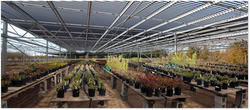 Greenhouse And Shade Structure Rooftops