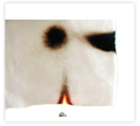 Flame Retardant Fiber