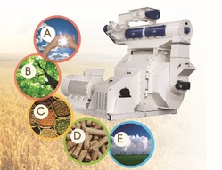 Biomass Wood Pellet Mill Machine