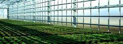Modifications Greenhouses